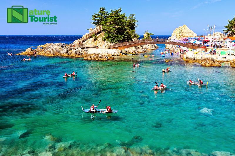 Trải nghiệm mùa hè với làn nước trong vắt bằng các hoạt động chèo thuyền trên biển ở thiên đường du lịch Tongyeong Hàn Quốc, vô cùng thú vị đấy!