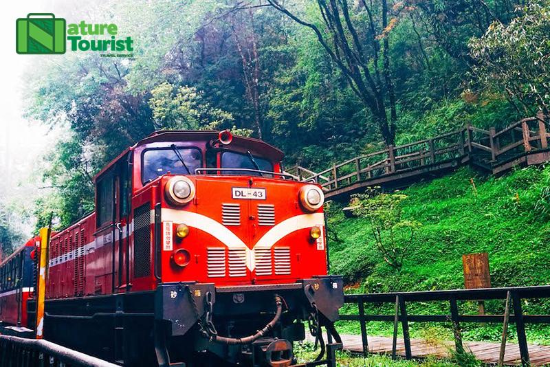 Bạn có thể đi tàu hỏa lên A Lý Sơn để ngắm cảnh