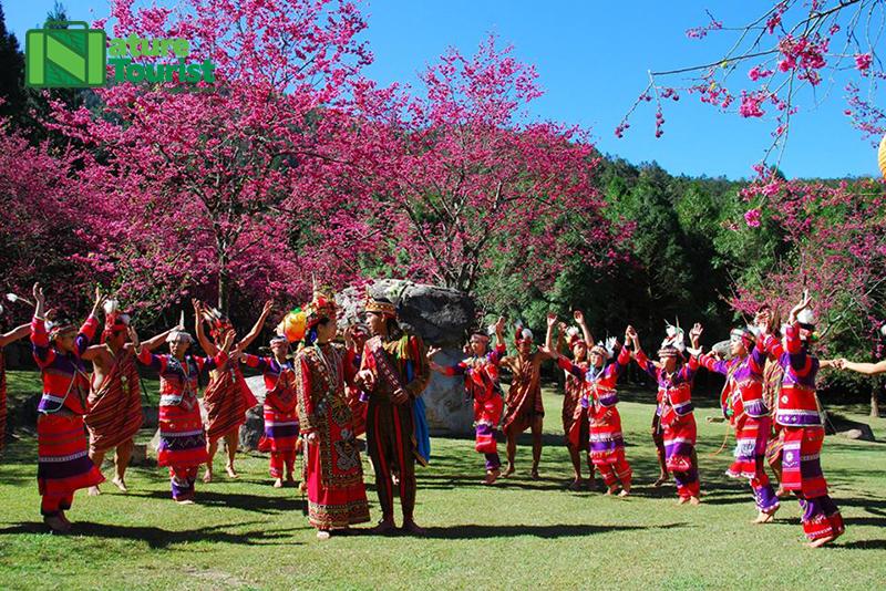 Du khách có thể tìm hiểu về văn hóa các dân tộc thiểu số tại làng Cửu Tộc