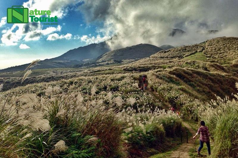 Núi Dương Minh với những cánh đồng cỏ bất tận