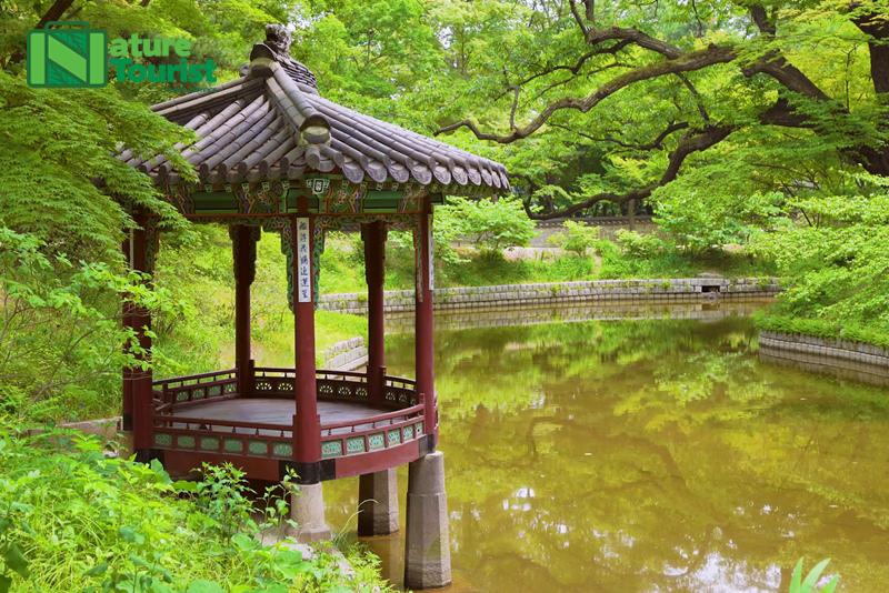 khu-vuon-bi-mat-huwon-duoc-xay-duoi-thoi-vua-taejong-cach-day-hon-600-nam